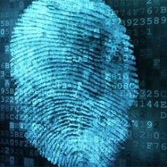 Tras la huella del crimen… ¿Cómo es el trabajo de un forense digital?